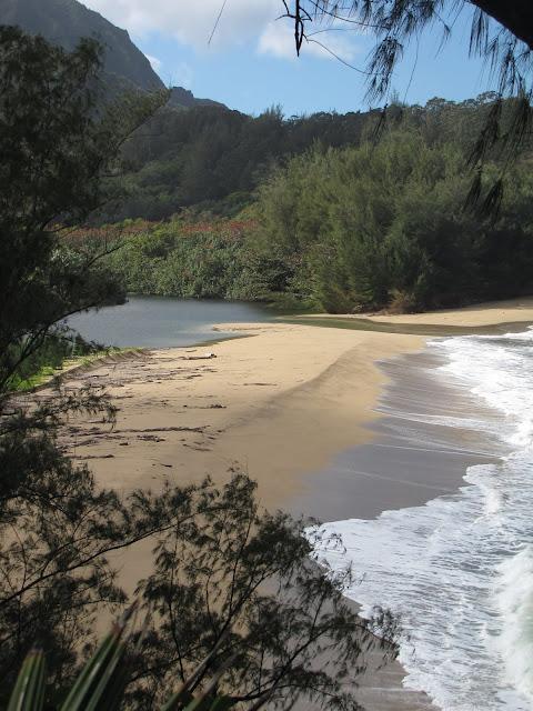 2012 - IMG_9401_Wainiha_Beach_Park.JPG