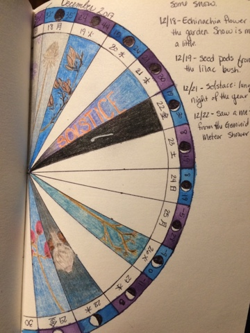 Phenology wheel from this week in our classical LDS homeschool.