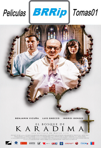 El Bosque de Karadima (2015) BRRip