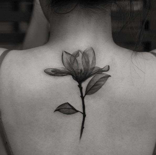 este_deslumbrante_de_raios-x_de_flor