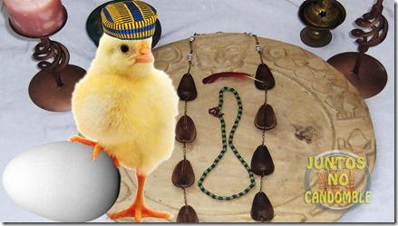 Significado dos Ovo dentro da religião de Ifá - candomblé - Umbanda - limpezas - orixás - santeria - Odu - Odun - olofin