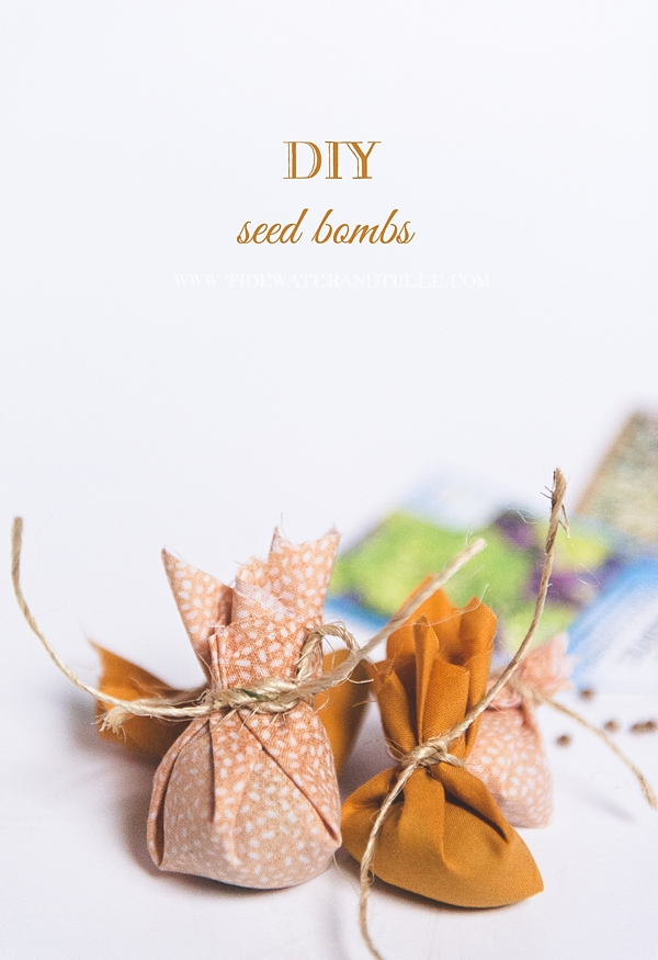 DIY Seed Bomb Wedding Favors | Tidewater and Tulle | Coastal ...