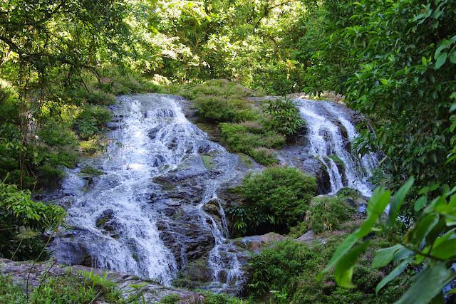 Lieu de passage de Morpho helenor peleides. Rio Llanito, route de Santa Fe à Guabal, 300 m (Veraguas, Panamá), 29 octobre 2014. Photo : J.-M. Gayman