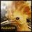 Dudok22's profile photo
