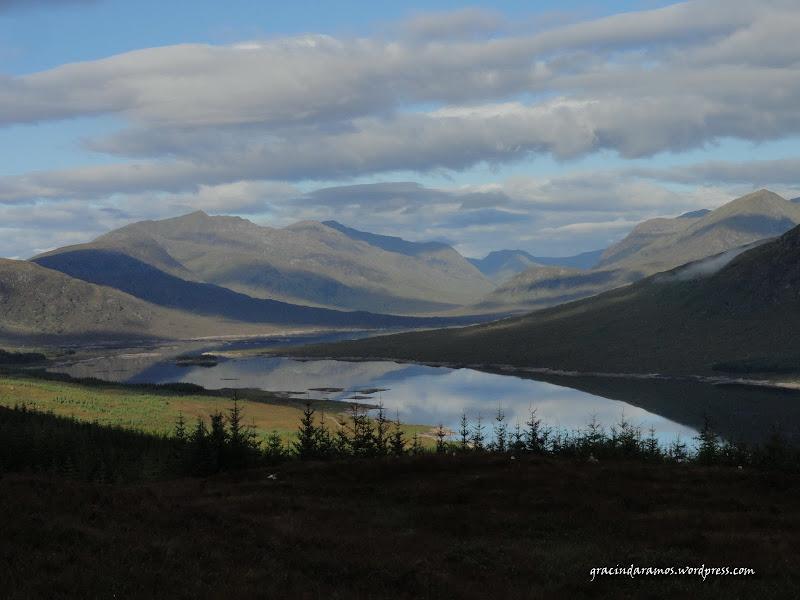 - Passeando até à Escócia! - Página 15 DSC03992