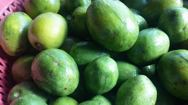 buah kedodong, petua untuk turunkan bacaan darah tinggi, petua tradisional, darah tinggi, ubat darah tinggi, buah amra