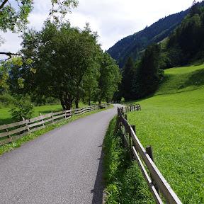 Schwarzwand-Reissrachkopf