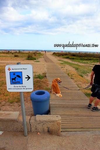 entrada a port ginesta playa perros