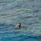 Egypte-2012 - 100_8675.jpg