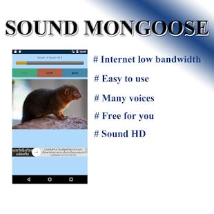 Ferocious voice - náhled