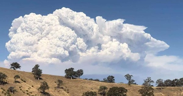 Massive pyrocumulus cloud over a bushfire north of Timbarra, Victoria, Australia, on 25 January 2019. Photo: TRFM