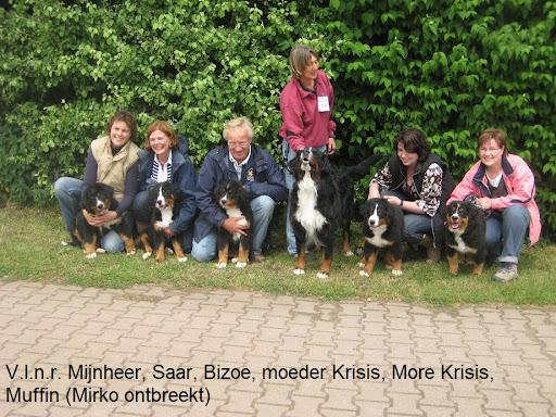 Moeder Krisis met  puppies bernerdag mei2009.JPG