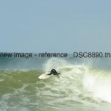 _DSC8890.thumb.jpg