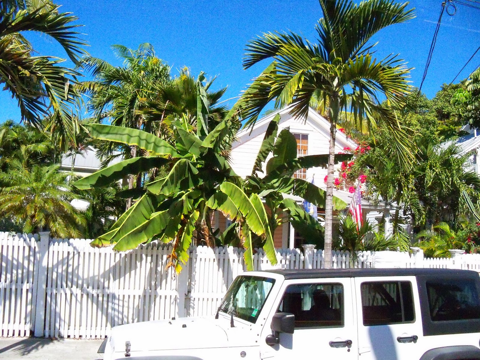 Key West Vacation - 116_5821.JPG