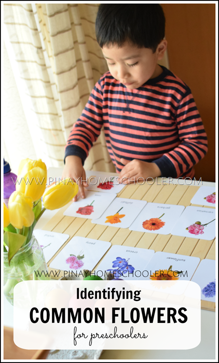 Identifying Common Flowers for Preschoolers