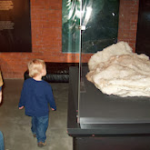 Houston Museum of Natural Science, Sugar Land - 114_6682.JPG