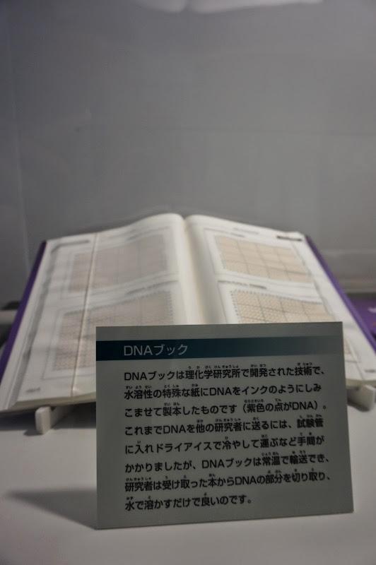 2014 Japan - Dag 4 - britt-DSC03424-0039.JPG