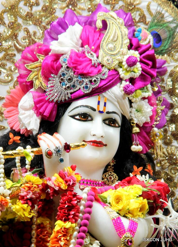 ISKCON Juhu Sringar Deity Darshan on 11th Sep 2016 (21)