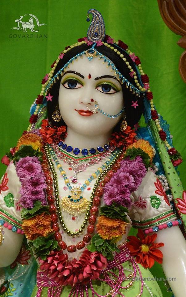 ISKCON GEV (Wada) Deity Darshan 22 Jan 2016  (8)