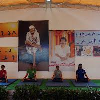 2015-16_international-day-of-yoga