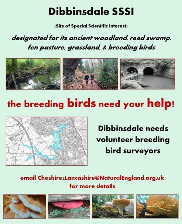 [Dibbinsdale+breeding+birds%5B3%5D]