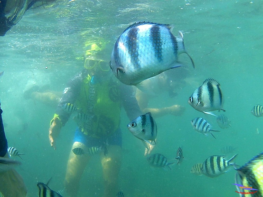 family trip pulau pari 140716 GoPro 53