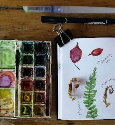Nature Journal by Alice Draws The Line