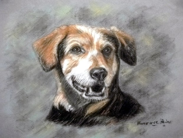 """""""Sam"""" by Florence Prime. Pastel Pencil Drawing. $275.00"""