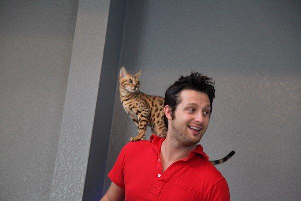 Pua Adam Lyons And Cat, Afc Adam Lyons