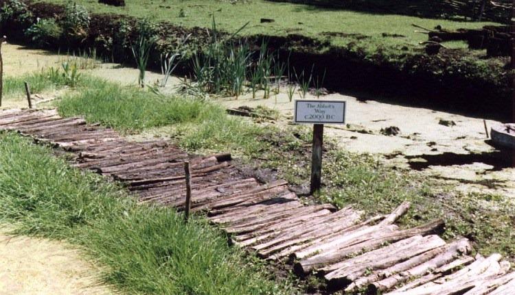 wooden-trackway-3