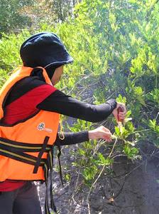 Sustainable Livelihood Training (CmE)