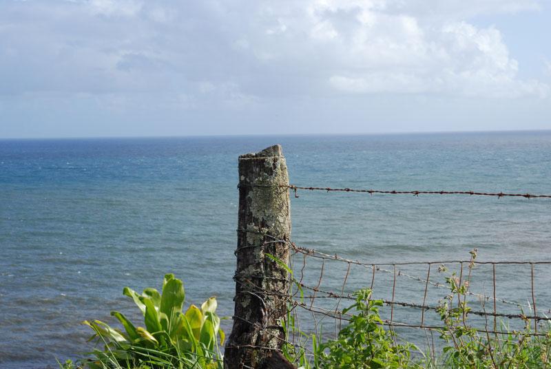hawaii - 52.jpg
