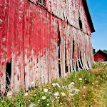 ChristinaDrane-The Red Barn.jpg