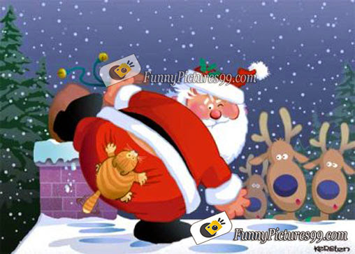 Facebooku0027s Funny Pictures   Facebooku0027s Profiles Covers   Funny Pictures For  Facebook   Funny Photos: Merry Christmas Funny Pictures   Page 1