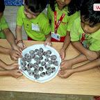 Chocolate Making Activity (Sr.KG.) 31-7-2018