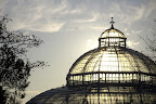 palm house, sefton park, liverpool, at sunrise