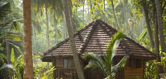Palm Paradise Cabanas