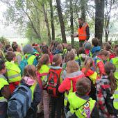 4e leerjaar - boswandeling