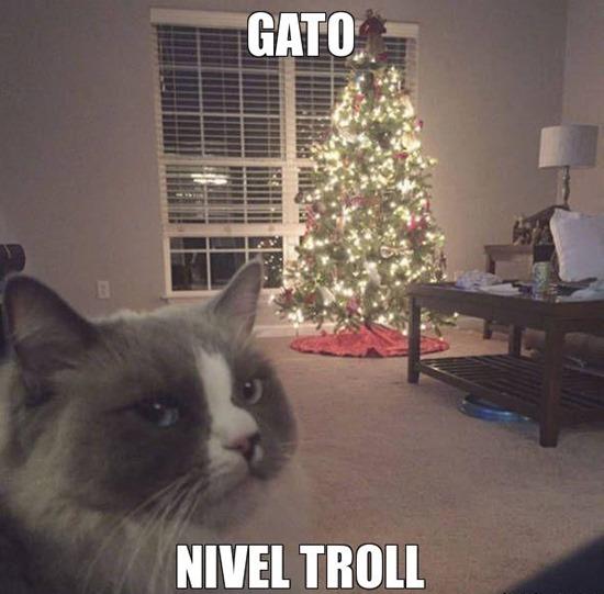 humor navidad cosoasdivertidas net (5)