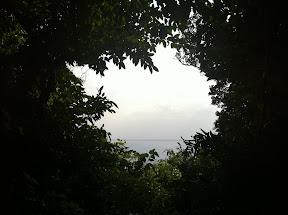 木々の向こうに見える神の島「久高島」