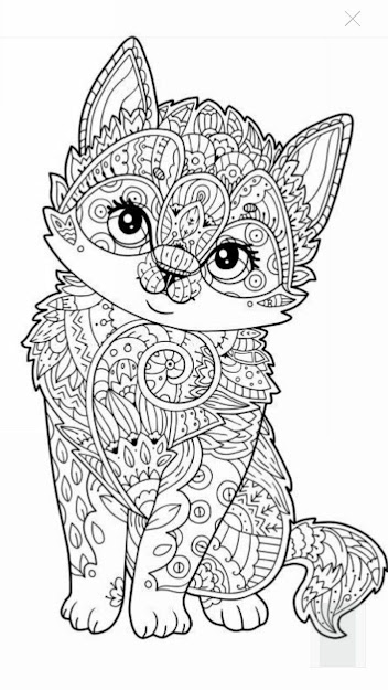 Cats Who Made Hilariously Poor Decisions Coloring Pages For  Adultscolouring