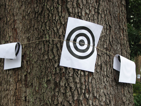 target-practice - IMG_1436.jpg