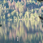 Paul Lake