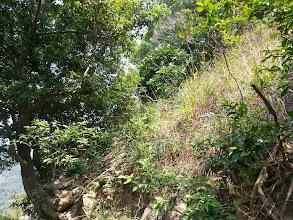 Photo: 一樹坡脊入口