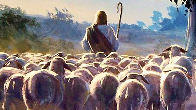 Chủ chăn đi trước và đoàn chiên theo sau