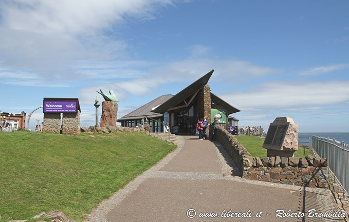2-2017-06-17_3_North-Berwick-scottish-seabird-centre_031