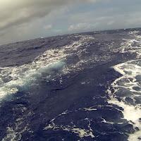 coralsea 24.jpg