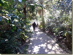 20151030_ Magnolia Plantation garden walk (Small)