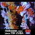 TIM★CUBA @ salsa sudada tokyo japan 2014 HALLOWEEN