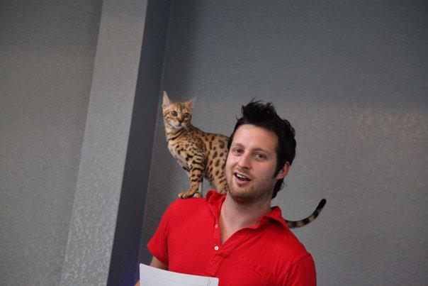 Pua Adam Lyons And Cat 2, Afc Adam Lyons